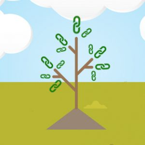 مزرعه لینک یا Link Farm چیست و چرا باید از آن پرهیز کرد؟