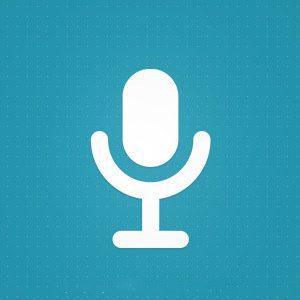 بهینه سازی فیچر اسنیپت ها برای جستجوی صوتی