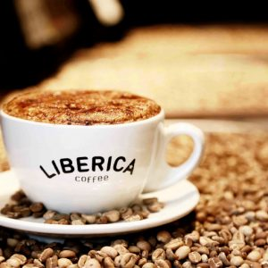 معرفی انواع قهوه و بهترین فروشگاه خرید قهوه